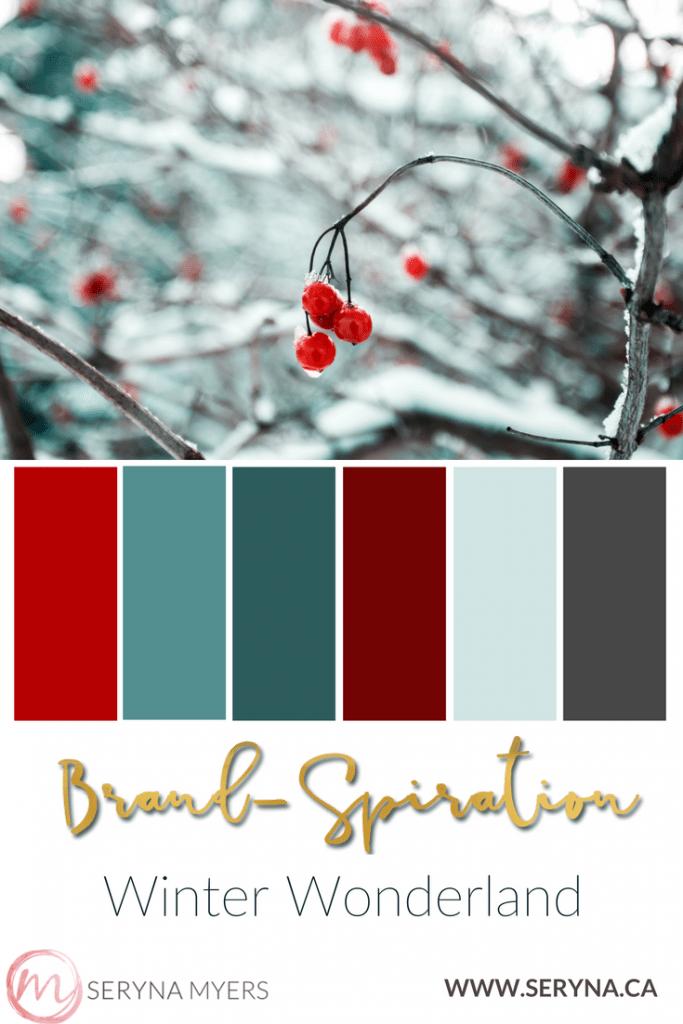 PIN - season winter 4