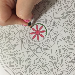 THE MEDITATIVE ART OF COLOURING